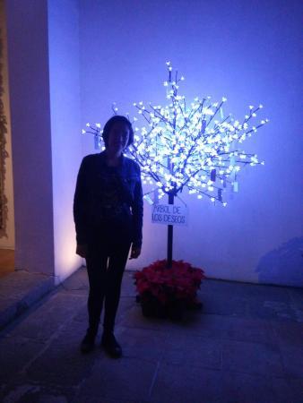 Casareyna Hotel: Árbol de los deseos