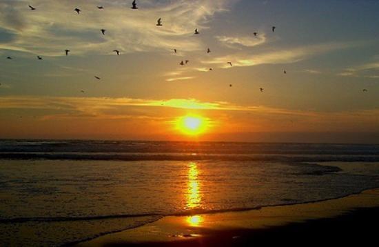 Playa chinchorro fotograf a de playa chinchorro arica for Bancos abiertos por la tarde