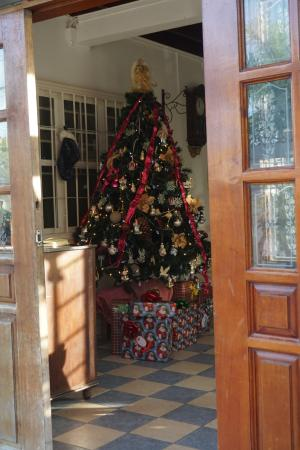D'Nest Inn: Christmas decor was a delight to see!