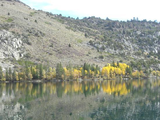 Big Pine, Kaliforniya: Inyo National Forest, California