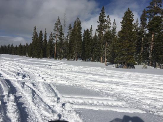 Eagle Ridge Snowmobile Outfitters : photo1.jpg
