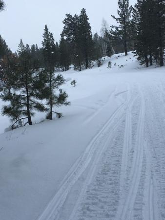 Eagle Ridge Snowmobile Outfitters : photo2.jpg