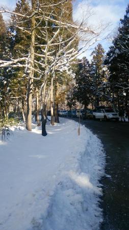 Snow Wave Park Shiratori Kogen: DSC_0037_large.jpg