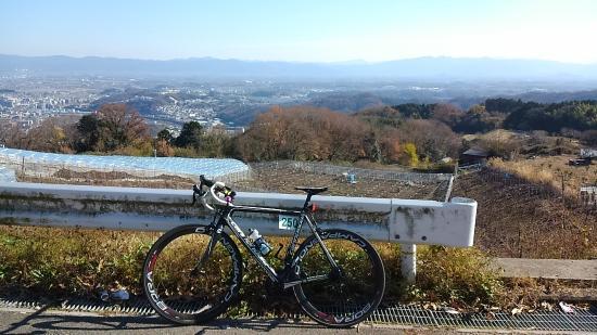 Tatsuta Kodo no Satoyama Park