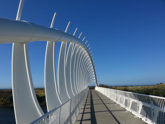 New Plymouth, Nya Zeeland: Spine of bridge