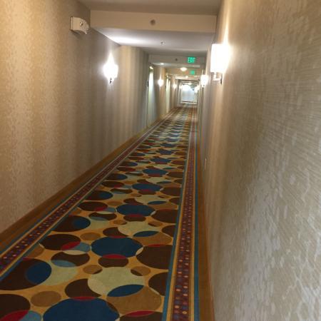 Homewood Suites by Hilton Lake Buena Vista-Orlando: Pasillos