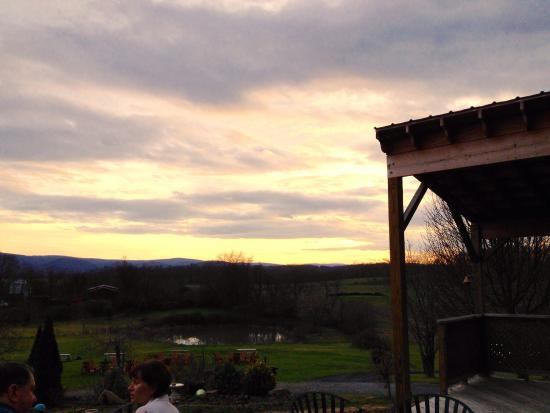 Berryville, VA: Sunday afternoon of wine tasting