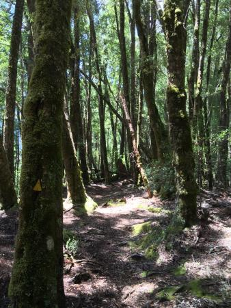 Wilderness Expeditions - Self-Guided Day Walk Tour: photo7.jpg