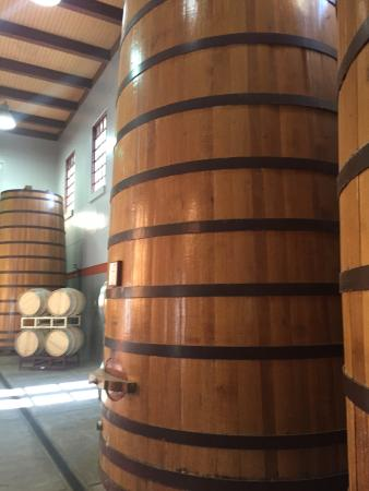 Clos Pegase Winery: ワイン樽