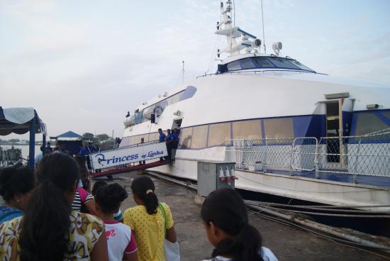 Sri Lanka Navy Whale Watching : Dock