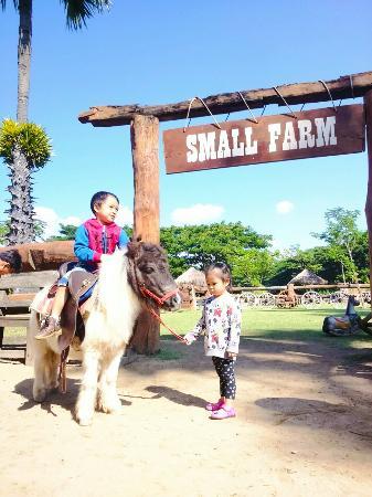 Small Farm Image