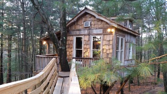 bridge to old pine tree house picture of the mohicans glenmont rh tripadvisor co uk pine tree house sacramento ca pine tree house store