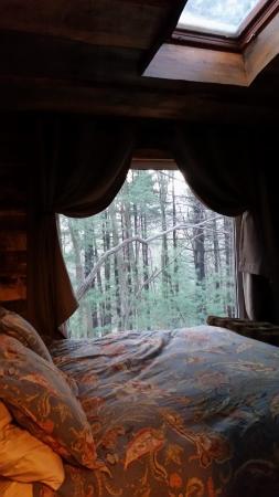 Glenmont, Ohio: Downstairs Bedroom