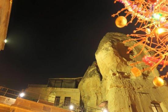 Divan Cave House: 部屋を出たときの眺めです。