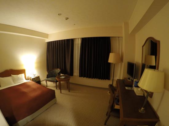 Narita Airport Washington Hotel