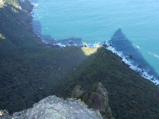 Whangarei, Nieuw-Zeeland: From the top and over the edge