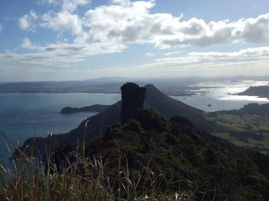 Whangarei, New Zealand: Looking back from Eagle Rock