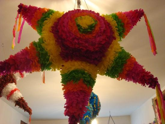 Frida Kolorida