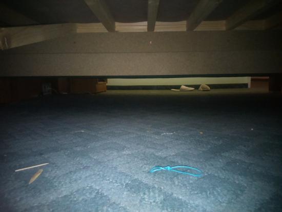 EA Hotel Tosca: Под кроватью