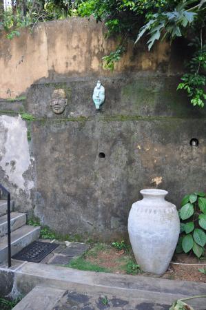 Hibiscus Villa : entrada