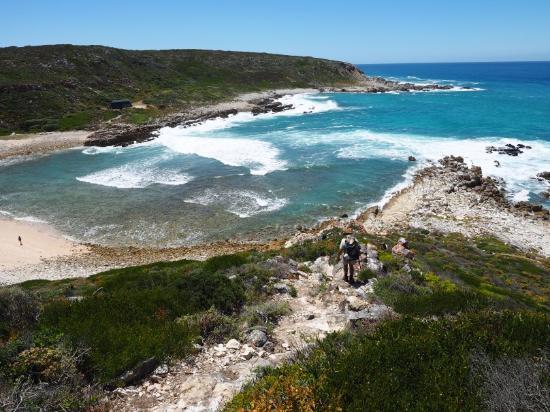 De Hoop Whale Trail