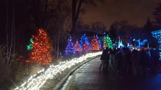 Detroit Zoo Christmas Lights.20151229 191157 Large Jpg Picture Of Detroit Zoo Royal