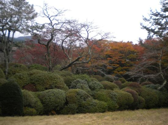 Horai Garden: 庭園