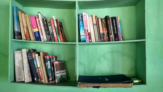 Falcon Guest House : Library