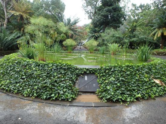 Fountain picture of botanical gardens jardin botanico puerto de la cruz tripadvisor - Botanical garden puerto de la cruz ...