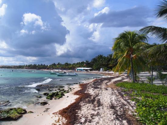 food picture of sandos caracol eco resort playa del. Black Bedroom Furniture Sets. Home Design Ideas