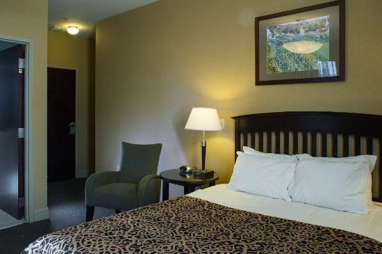 The Parker Inn & Suites: Standard Queen