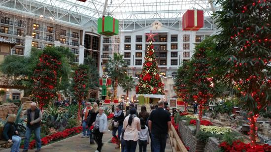 gaylord texan resort convention center christmas decorations