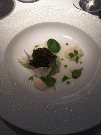 Food - Restaurant Gordon Ramsay Photo