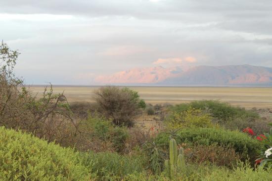 Manyara Wildlife Safari Camp: IMG_0576_large.jpg