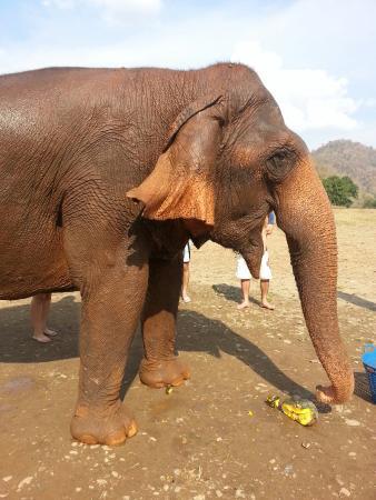 Провинция Канчанабури, Таиланд: 20151230_141437_large.jpg