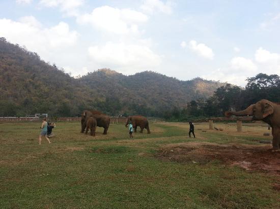 Провинция Канчанабури, Таиланд: 20151230_132220_large.jpg