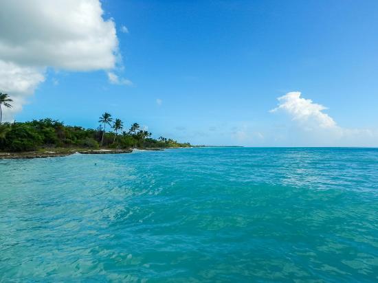 Saona Island : Путешествие к острову