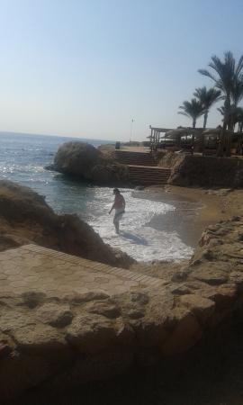 Beach - Renaissance Sharm El Sheikh Golden View Beach Resort Photo
