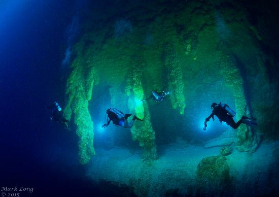 Aside! Willingly Great blue hole belize diving