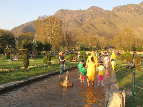 View Of Garden Picture Of Mughal Gardens Srinagar