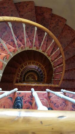 Hotel La Gioconda: 20151230_154925_large.jpg