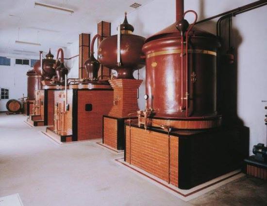 Pineau Cognac Roussille
