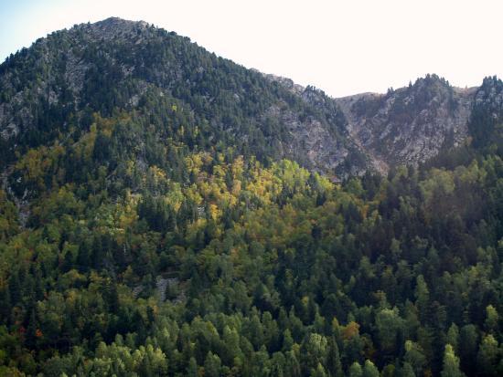 Madriu-Perafita-Claror Valley : Otoño en el Madriu
