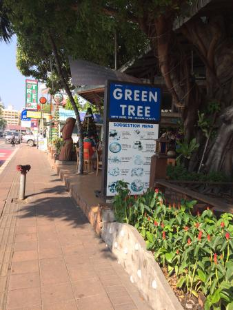 Green Tree Restaurant An Entry View