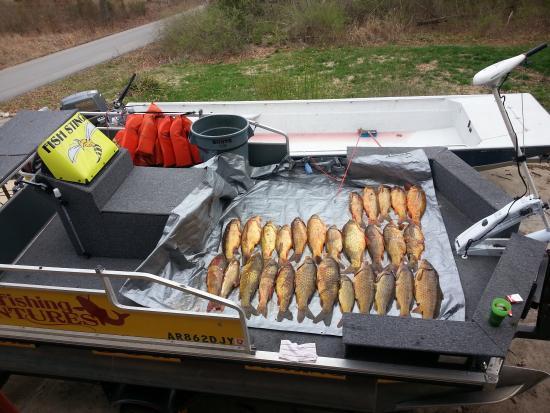 Bull Shoals, AR: bow fishing