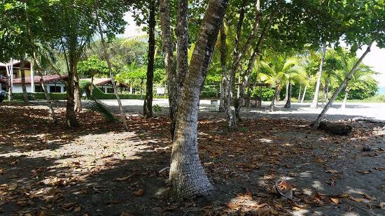 Agua Dulce Beach Resort : Zona de playa