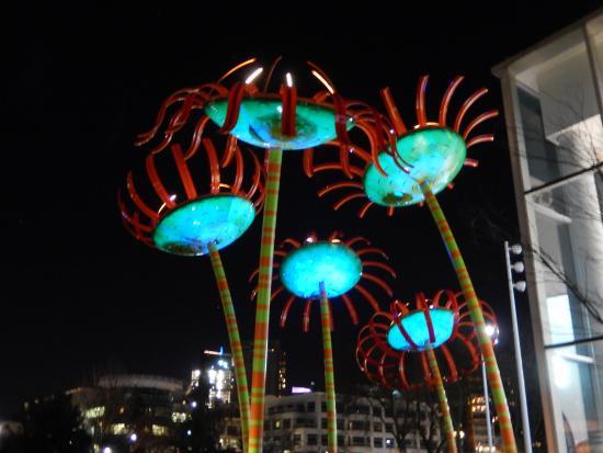 "Seattle Center : ""Sonic Bloom"""