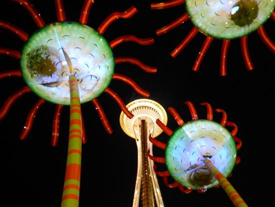 Seattle Center : Sonic Bloom and the Needle