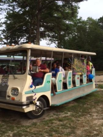 CAPE CODS MAPLE PARK CAMPGROUND AND RV PARK Updated Reviews - Upper cape tech car show