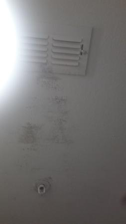 Painted Over Black Mold On Ceiling Fan Inoperable